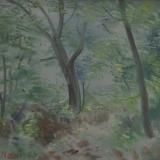 LILLONI_Omaggio a Chianciano, 1967, olio su tela, 30 x 40 cm